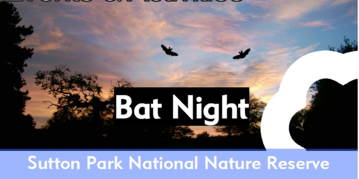 Bat Night 2017